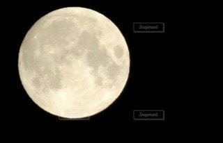 月の写真・画像素材[3406359]