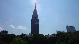 新宿御苑からドコモタワーの写真の写真・画像素材[3528149]