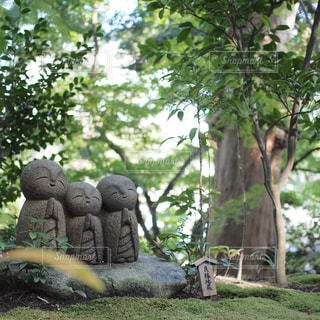鎌倉の写真・画像素材[143860]