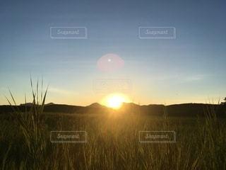 草原に沈む夕日の写真・画像素材[3565401]