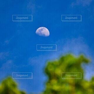 日中の月の写真・画像素材[4355121]