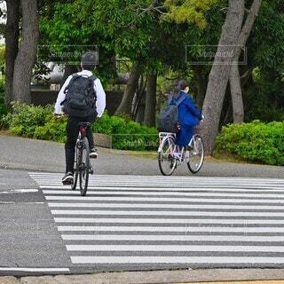 自転車通学の男子学生と女子学生の風景の写真・画像素材[4414272]