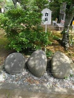 力石の写真・画像素材[4545925]