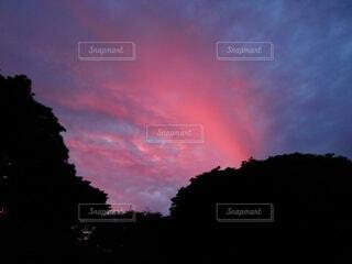 きれいな夕焼け②の写真・画像素材[4574351]