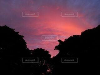 きれいな夕焼け③の写真・画像素材[4574350]