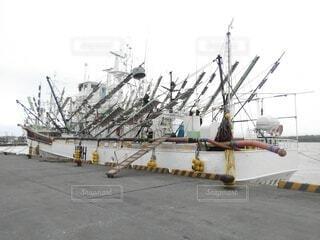 サンマ船の写真・画像素材[4728215]