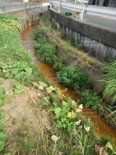 川の写真・画像素材[4741895]