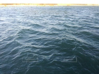 海の写真・画像素材[4950139]