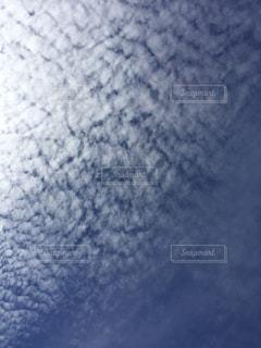 自然の写真・画像素材[143060]