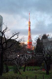 風景 - No.292789