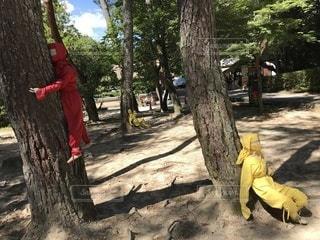 木の隣に立っている男の写真・画像素材[3525283]