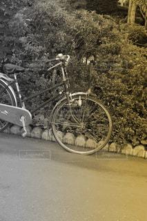 自転車の写真・画像素材[169237]