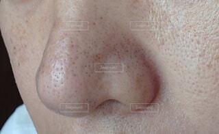 鼻の写真・画像素材[3719507]