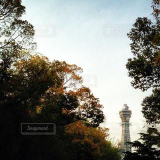 風景 - No.146110