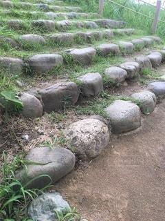 頂きへの石段の写真・画像素材[3473773]