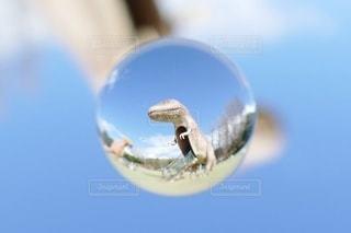 楽しい公園の景色の写真・画像素材[3467717]