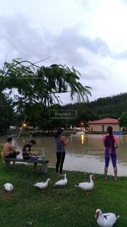 湖畔で釣りの写真・画像素材[3464680]
