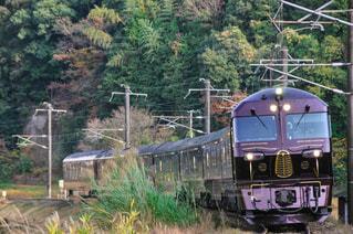 森の近くで列車の線路を下って移動する列車の写真・画像素材[3433789]