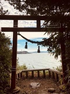 雄島の中の鳥居の写真・画像素材[3434845]