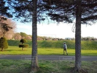 緑豊かな畑に立っている人の写真・画像素材[3438617]