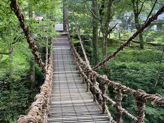 山の中にある木の橋の写真・画像素材[3528814]