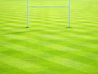 フットボール場のクローズアップの写真・画像素材[3569690]
