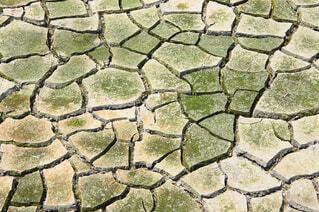渇水の写真・画像素材[4690754]