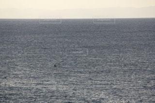 広い 海の中 一人の写真・画像素材[3444688]