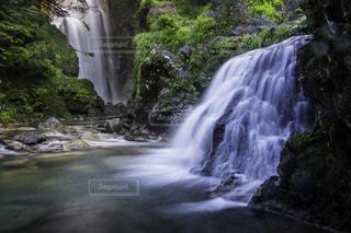 No.146671 滝
