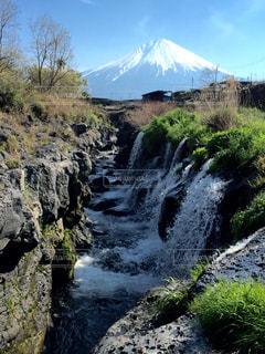 No.146689 富士山