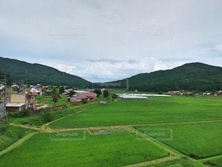 田んぼのある風景の写真・画像素材[3504877]