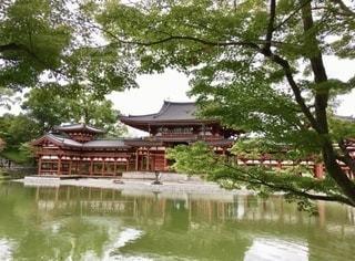 平等院鳳凰堂の写真・画像素材[3516876]
