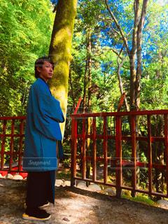伏見稲荷の自然な風景と共に - No.1151479