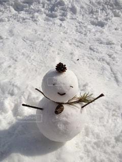 雪の写真・画像素材[285504]