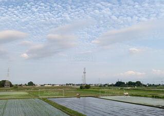 田舎の風景の写真・画像素材[4581454]