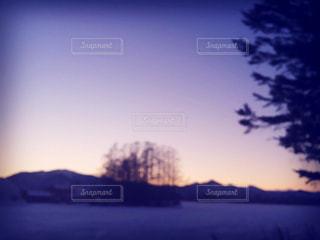 冬の写真・画像素材[147173]