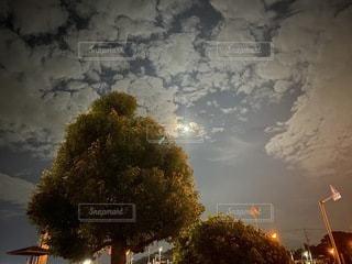 梅雨明けの月の写真・画像素材[3511564]