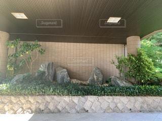 石の写真・画像素材[3556379]