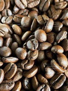 焙煎したての香り高いコーヒー豆☕️の写真・画像素材[4304538]