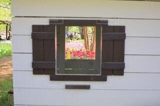 小屋の窓の写真・画像素材[4338585]