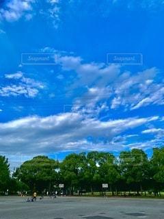 日曜日の公園の広場の写真・画像素材[3507887]