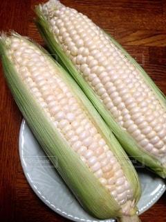 白いトウモロコシの写真・画像素材[3560861]