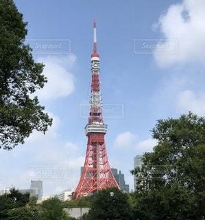 東京タワーと芝公園の写真・画像素材[2709453]
