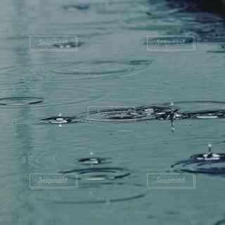 水たまりの音楽の写真・画像素材[3485274]