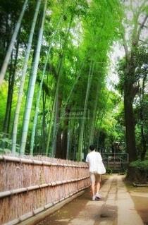 お寺の通路を歩く男性の写真・画像素材[3683644]