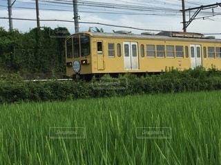 田園の中を走る列車の写真・画像素材[3568053]