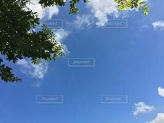 青い空の写真・画像素材[3728989]