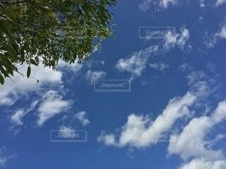 空の雲の群の写真・画像素材[3735265]