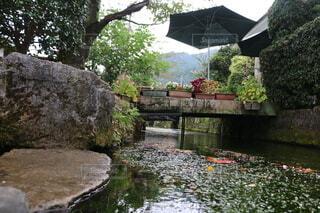 傘のある川の写真・画像素材[3759392]