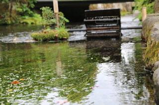 水域を流れる川の写真・画像素材[3765293]